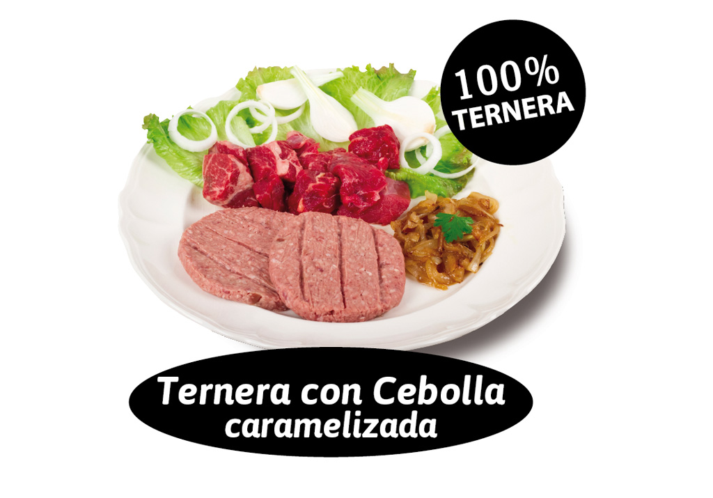 burger_cebolla_ternera